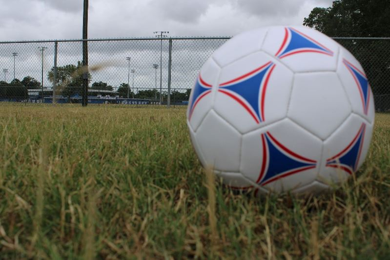 Soccer ball on grassy field