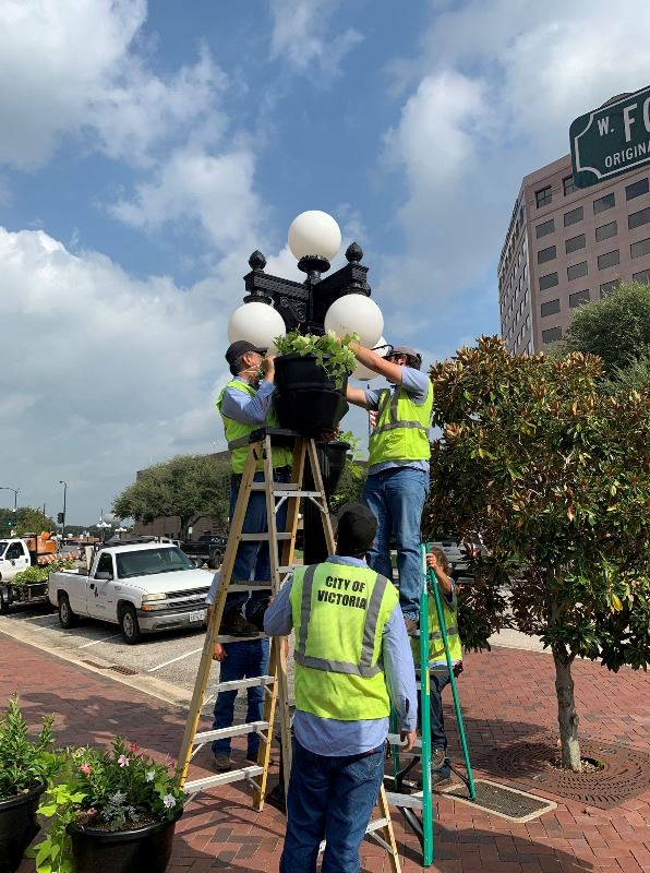 City staff hang flower baskets from the lampposts at the corners of DeLeon Plaza