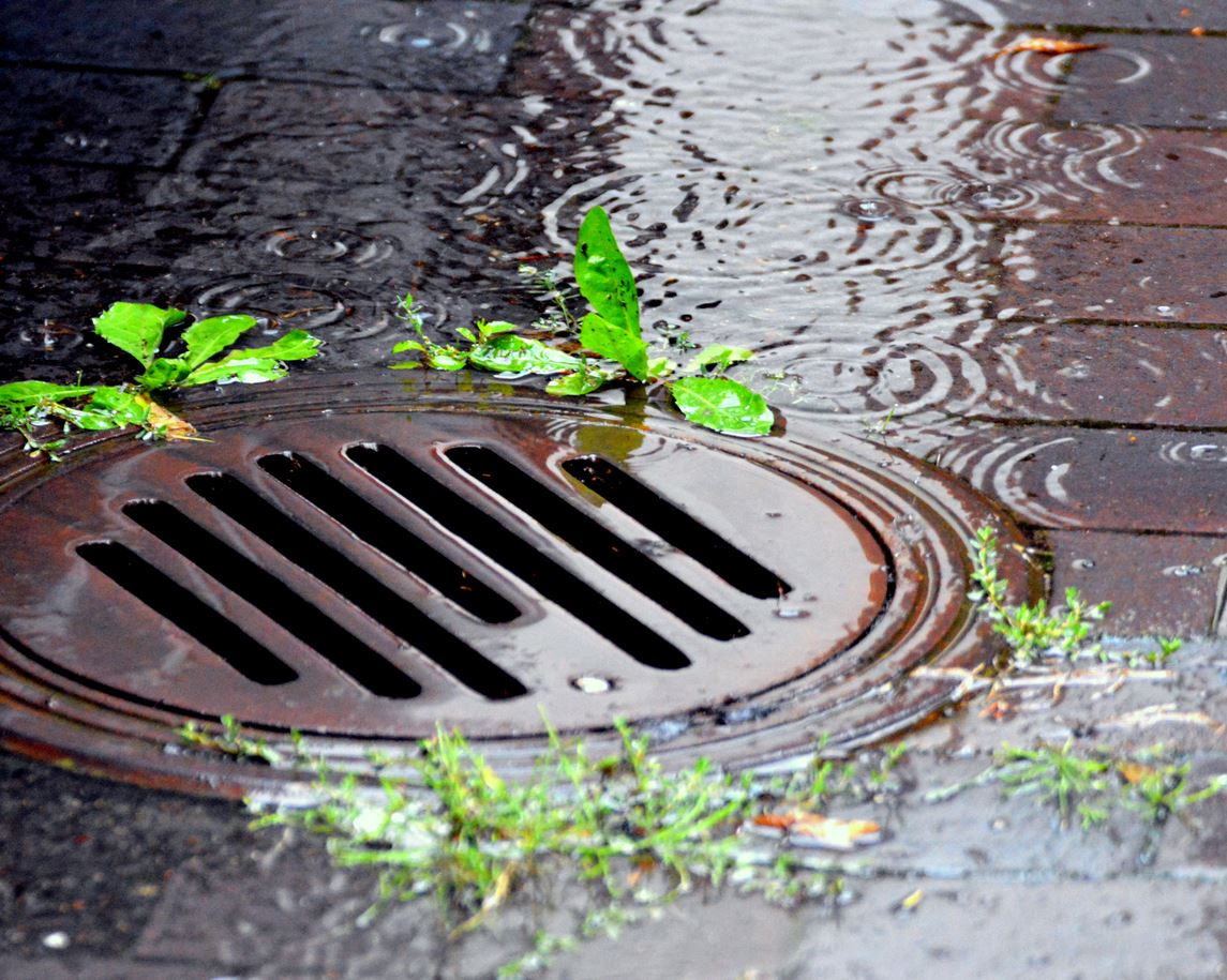 Rainwater flows into a storm grate on the pavement